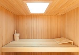 Farblichtgerät Sauna-Paneel 50