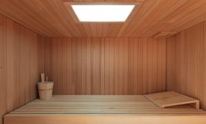 Sauna Farbpaneel poetic 30 Espe